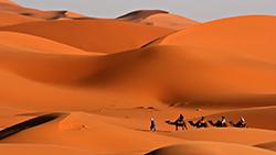 пустыня 1