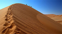 Пустыни. категория (фото 1)