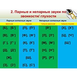 Парные звонкие и глухие согласные звуки I. 8лет (фото 2)
