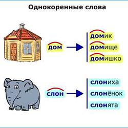 Родственные (однокоренные) слова. категория (фото 1)
