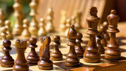шахматы 7лет 1