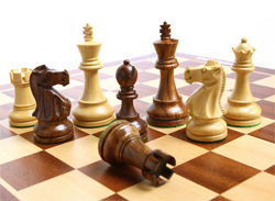 шахматы 7лет 2