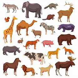 Animals (wild). 7лет (фото 1)