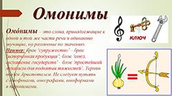 омонимы 1