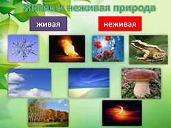 природа живая и неживая 2