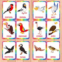 птицы 1 6лет