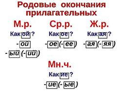 Род имён прилагательных. 8лет (фото 2)
