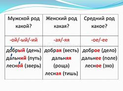 Род имён прилагательных. категория (фото 1)