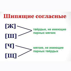 Шипящие согласные звуки и буквы. категория (фото 1)